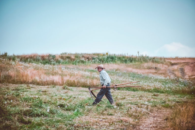 Canva - Man Walking On Farm (1)